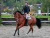 RR Landtine e. Solos Landtinus / Royal Z II - Elizabeth Berg