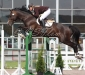 RR Lord of Rings e. Lord Caletto / Royal Z II - Inger Bugge 2.plass 1.20 m Landsstevne