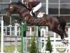 RR Lord of Rings vinner nasjonal 1,40 m
