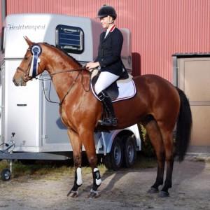 RR Landdorne e. Solos Landtinus / Royal Z II - Emely Paulsen