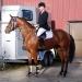 RR Landdorne e. Solos Landtinus / Royal Z II, Norges beste hoppe/4-års spranghest 2008
