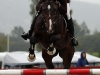 RR Lord of Rings e. Lord Caletto / Royal Z II - Inger Bugge, Beste norskfødte 5-års Breeders 2009